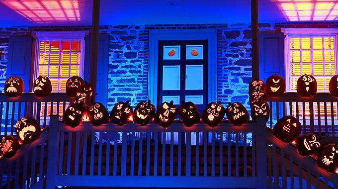 pumpkinline_slider.jpg