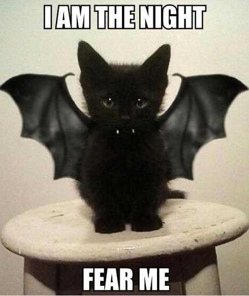 Halloween-Memes-1.jpg