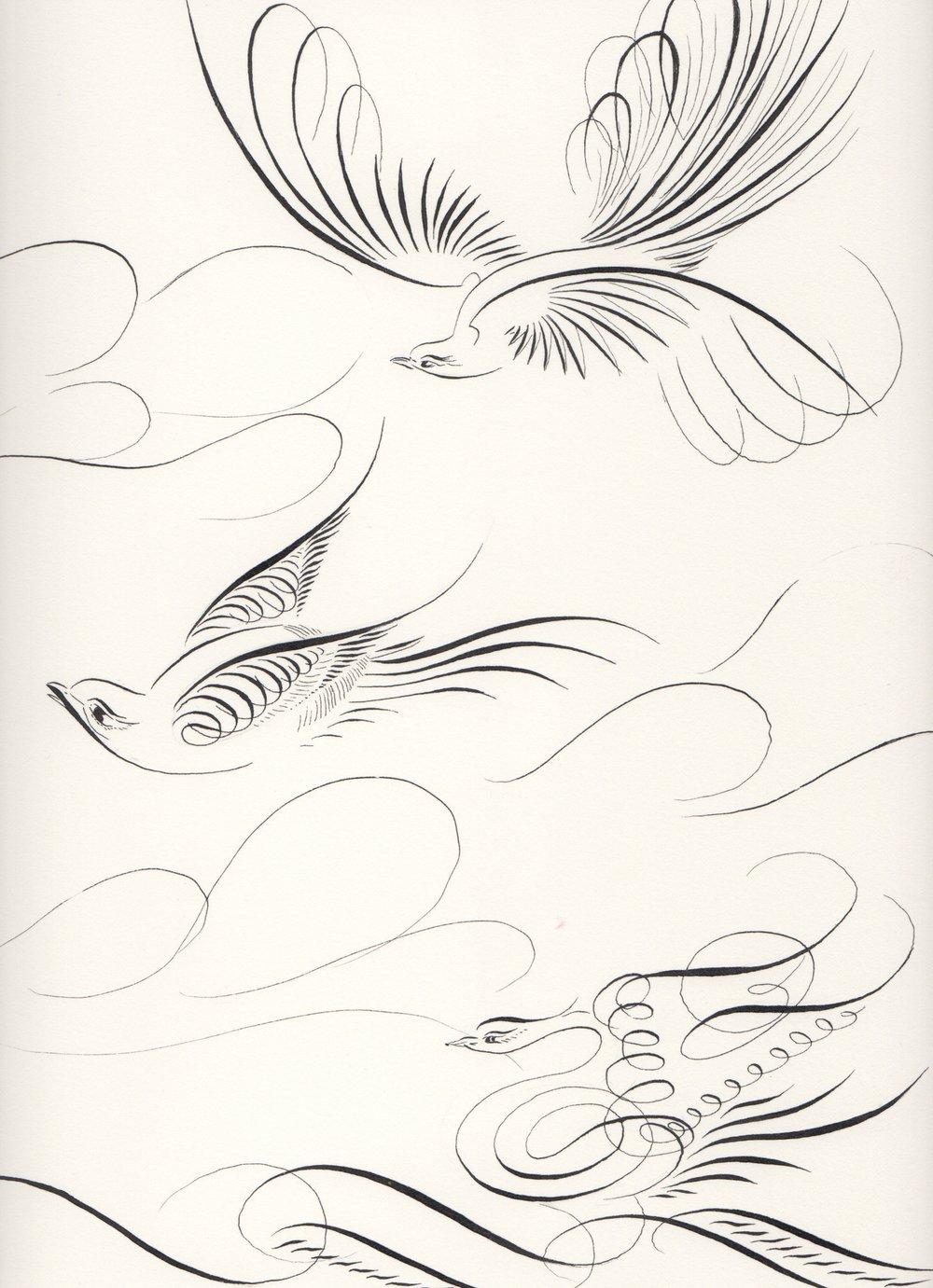 flourishBirds.ƒ.jpg