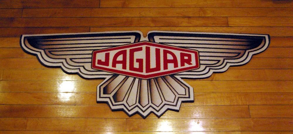 Jaguar_2.jpg