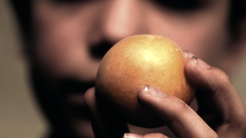apricot_ben_briand_15