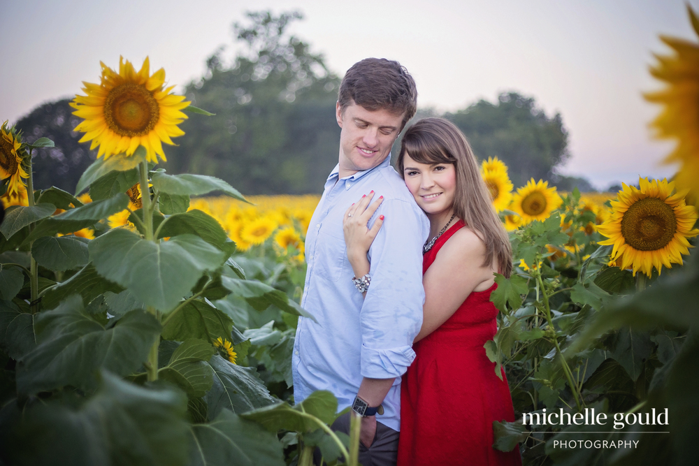 Sunflower Engagement Photographer
