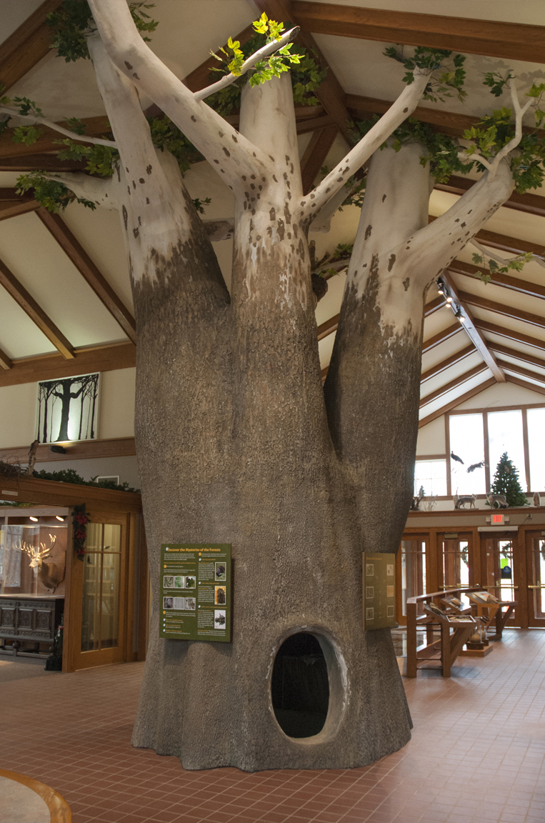 Highbanks-Nature-Center-Sycamore-Tree-Exhibit.jpg