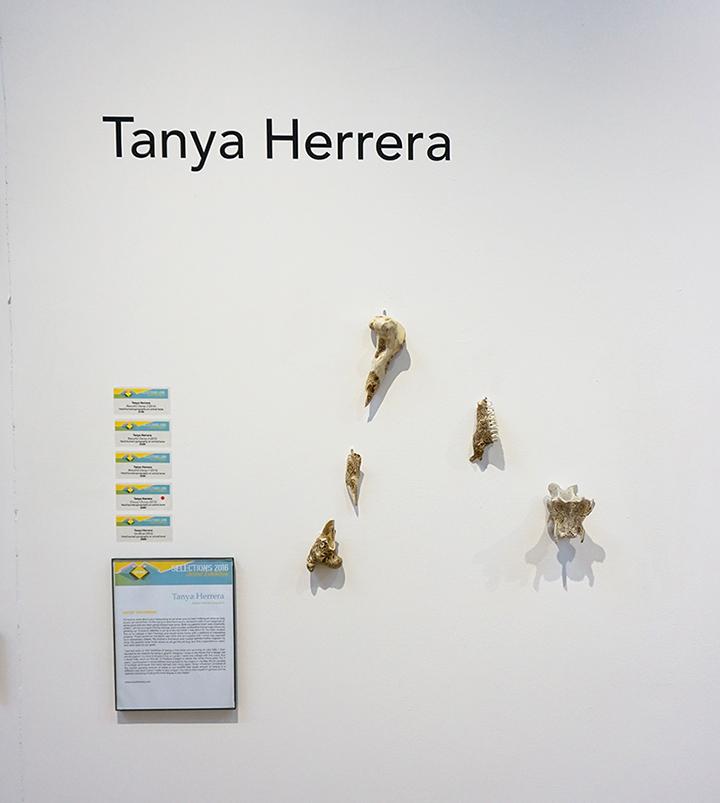 Tanya_Herrera.jpg