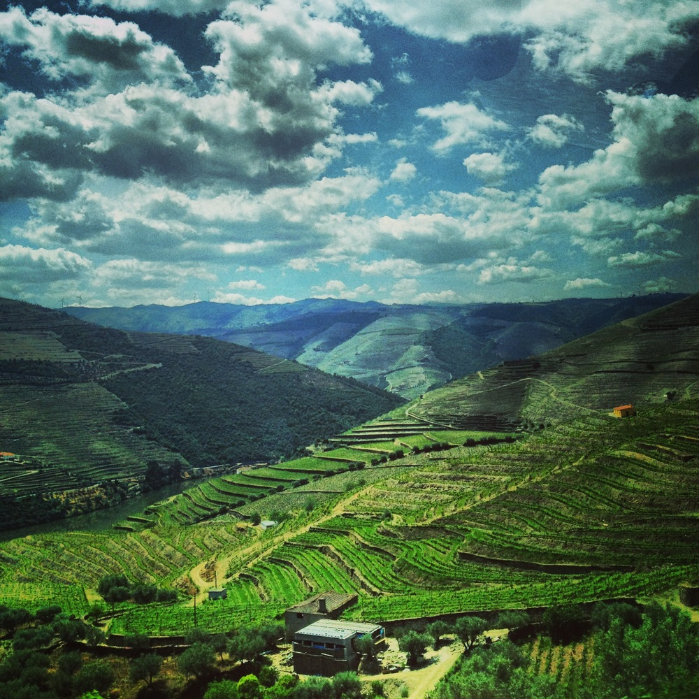 Duoro Valley in Portugal - Photo Credit: @jengoesafar