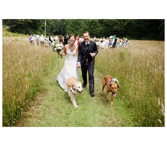 pet-wedding-75820_gal.jpg