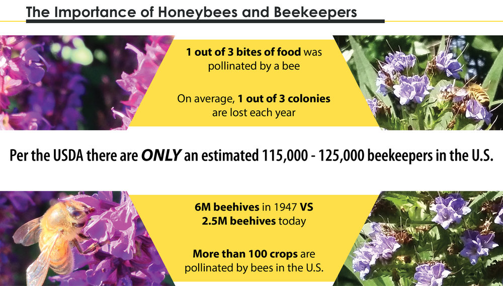 Importance of beekeeping.jpg