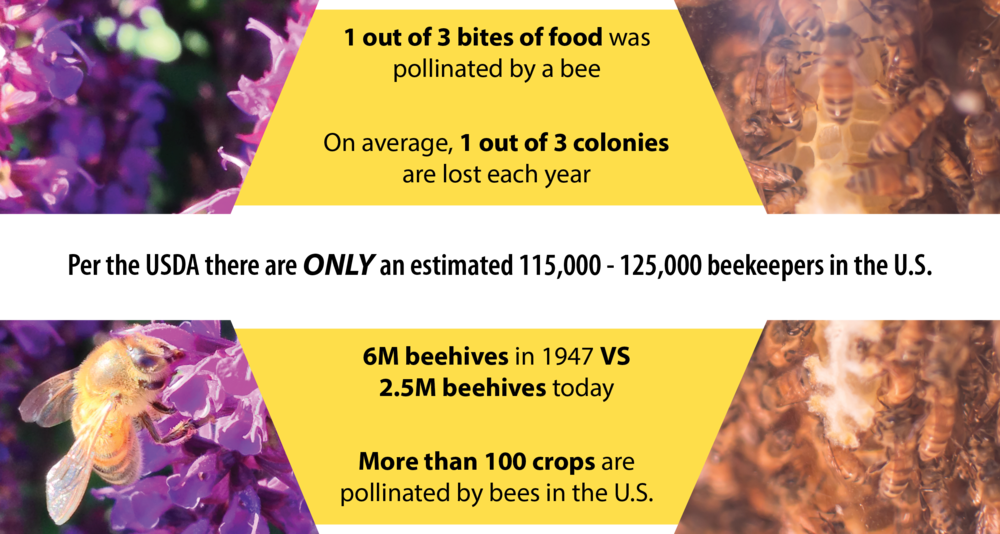 Beecosystem Beekeeper importance_2.png