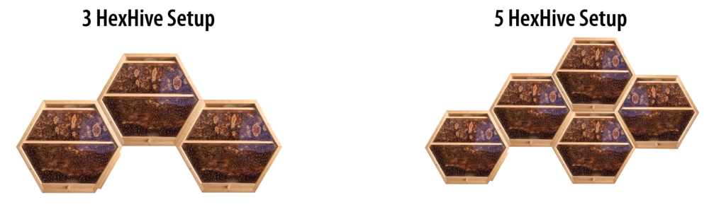 hive options.png
