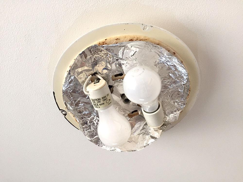 bulbs.jpg