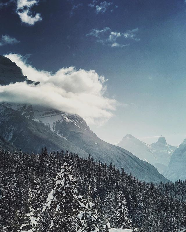 So many ways to crop #rockymountains #alberta #parkway #travelalberta #winterwonderland
