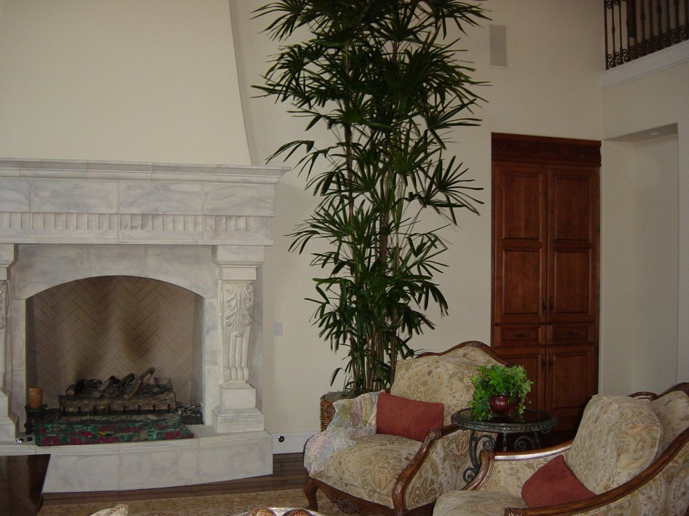 Fireplace Palm Estate image.JPG