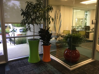 Progressive Office Plantscapes