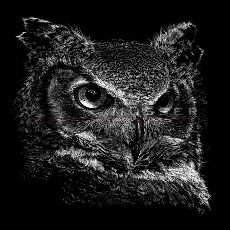 GH Owl3 5xWM.jpg