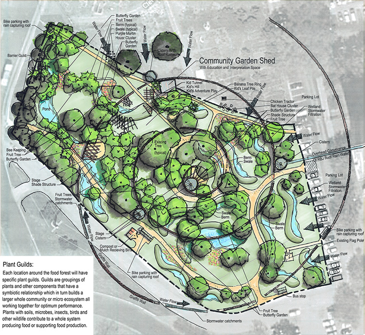 Landscape architect Mitchell Wright and permaculture designer Chris Sanchez created a conceptual plan for the proposed East Feast Festival Beach Food Forest. See https://www.austinchronicle.com/news/2014-02-14/the-way-of-the-food-forest/