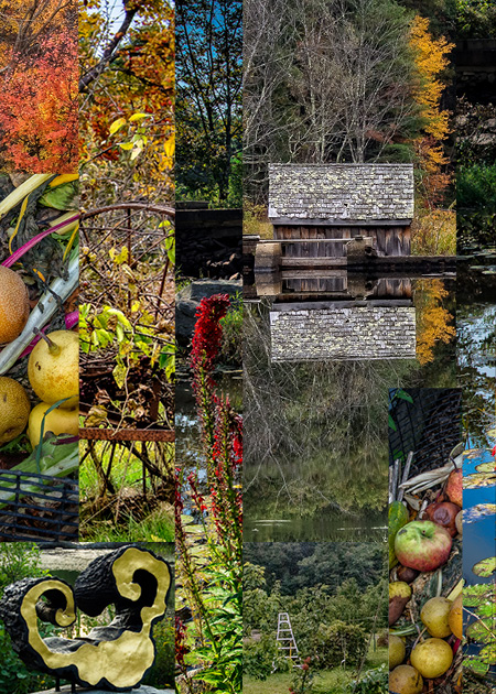 Plein Air 2017 Inside Collage.jpg