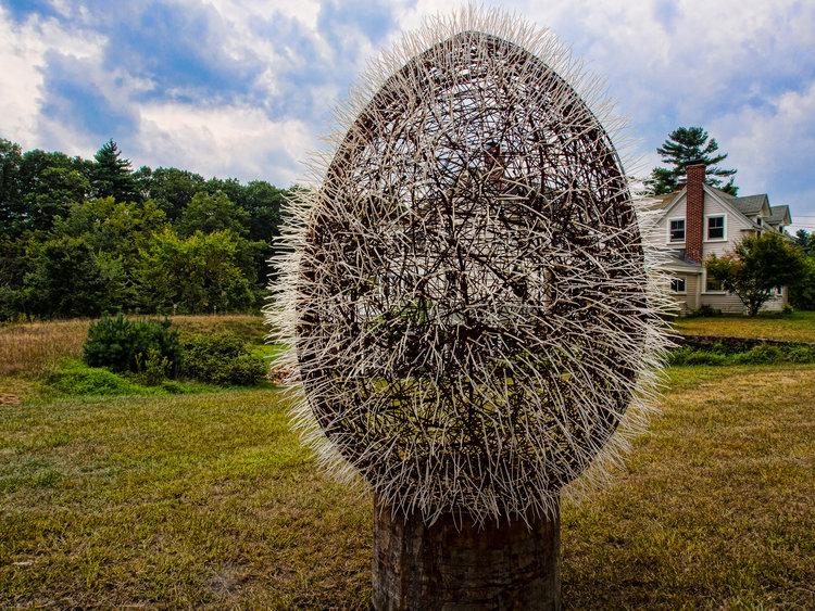 The Egg, by Yin Peet