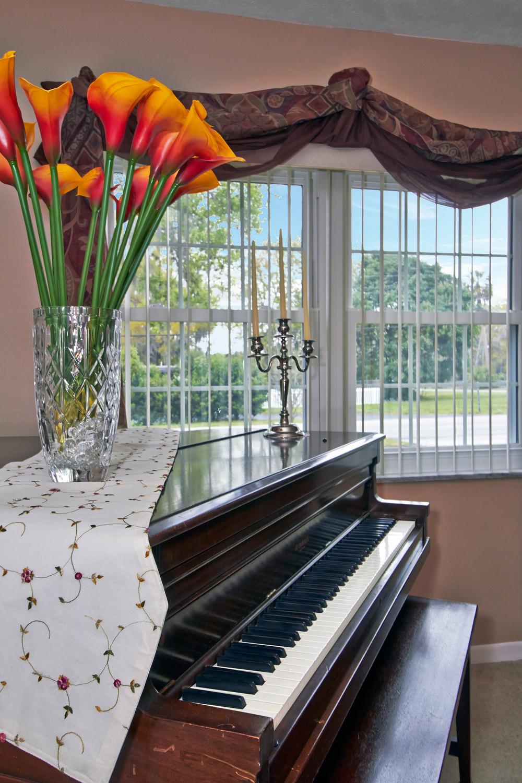 Piano View.jpg