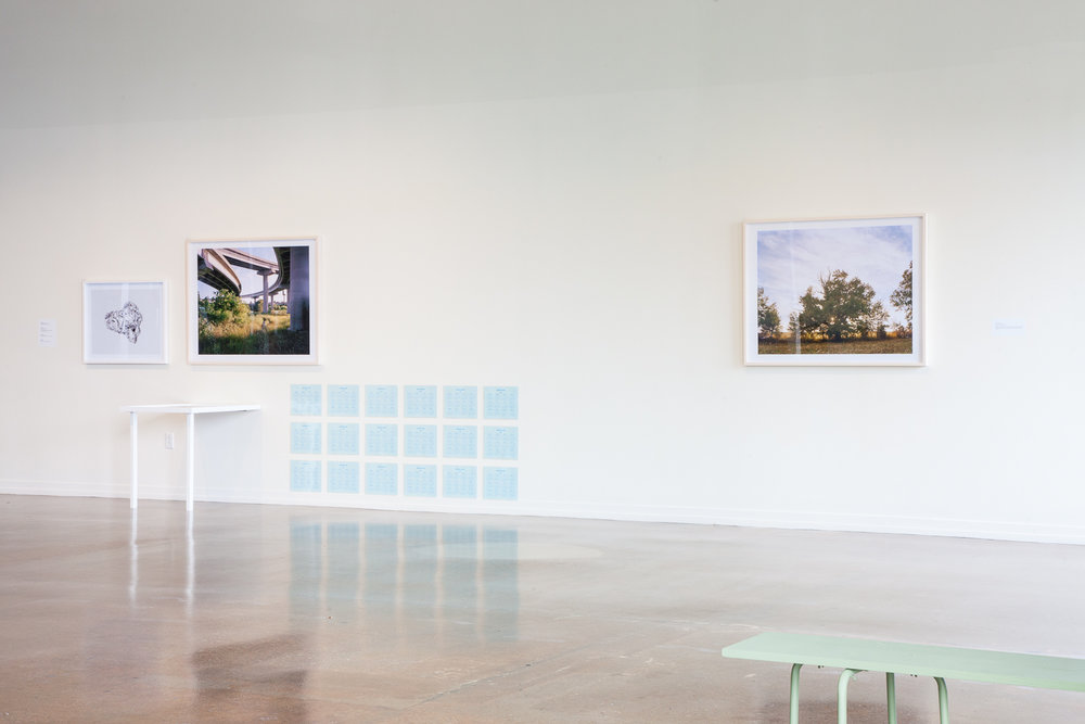 Installation View  Left to right:  Styrofoam Study, Seven Mile Creek (Deguira); Underground Beehive (Deguira); Newmarket Creek; Calendar (Deguira); Mother Tree.