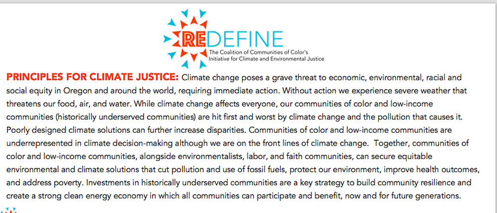 Click on image to access REDEFINE Principles for Climate Justice.
