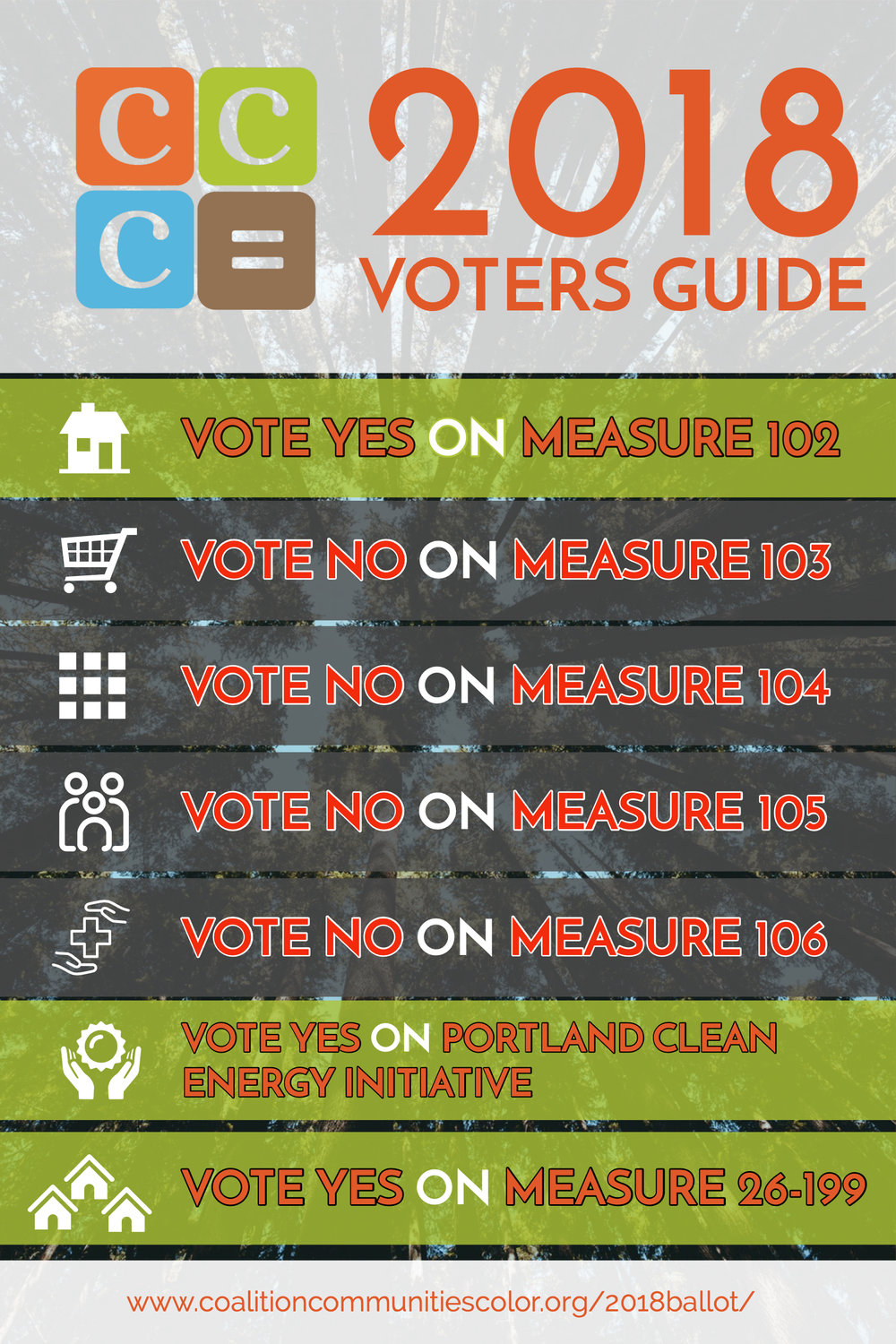 CCC Voting Guide.jpg