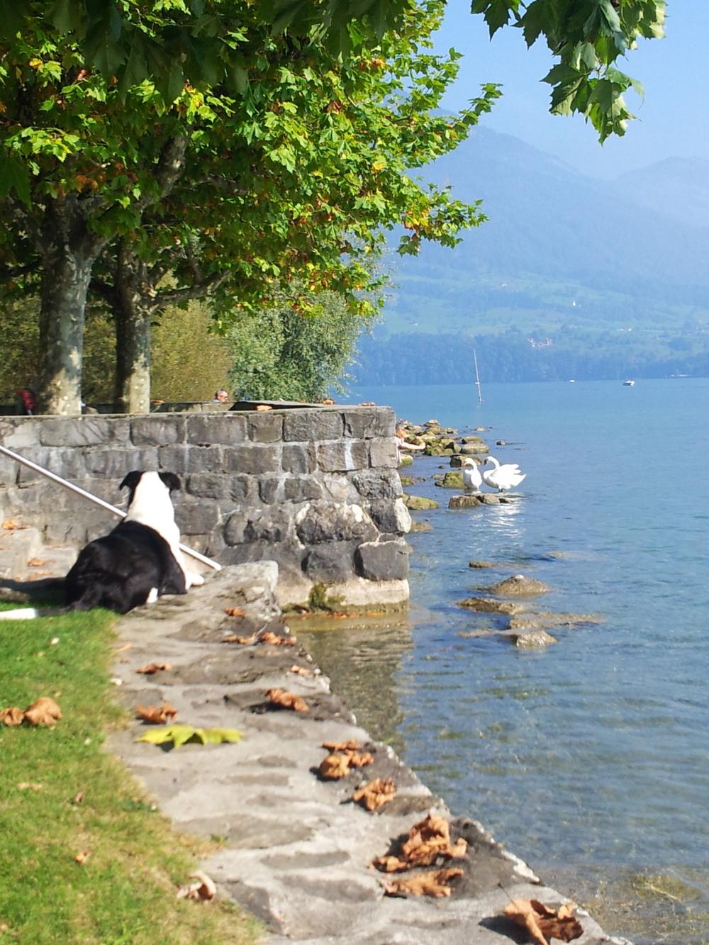 Maxine in Zwitserland 1 - Getoutoftown.jpg