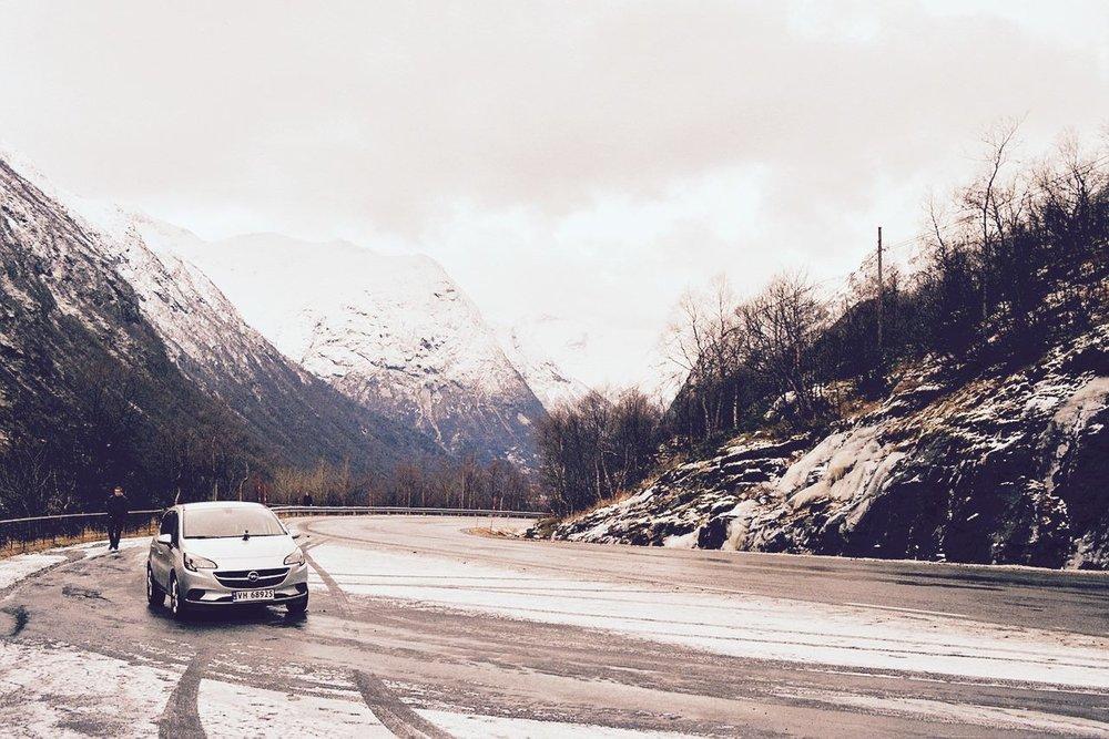 Flor Noorwegen.jpg