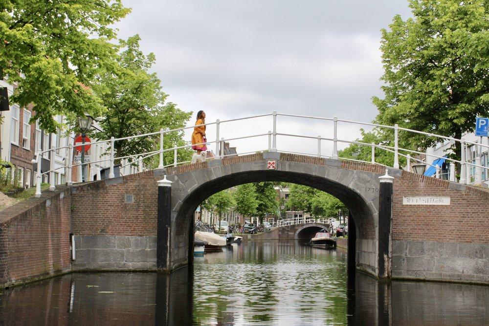 Een dag in het pittoreske  Leiden , de stad waar ik ooit woonde en afstudeerde.