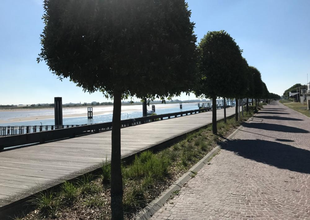 vissershaven nieuwpoort.png