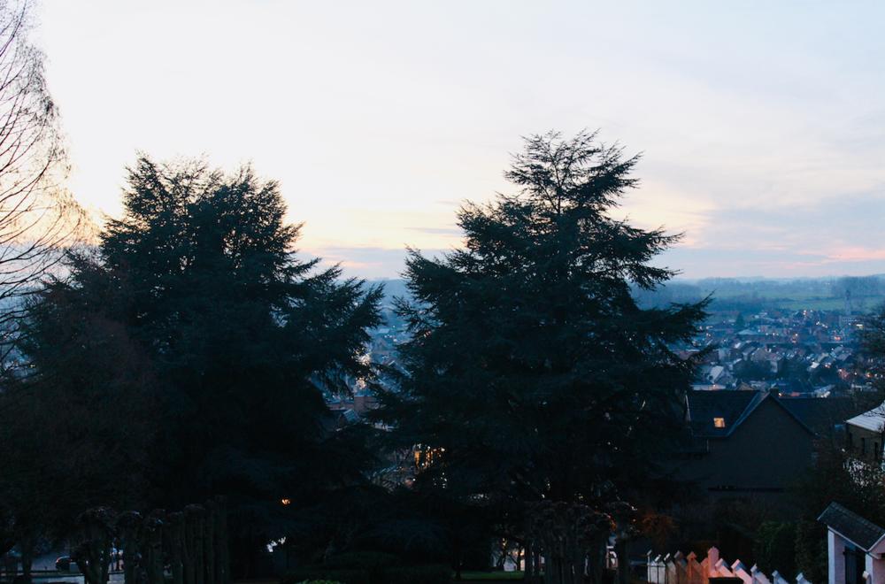 Achter de bomen zie je de binnenstad en in de verte de weide, groene omgeving.