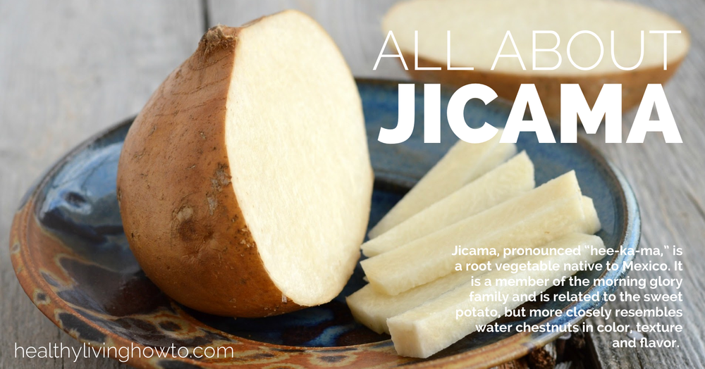 All-About-Jicama-healthylivinghowto_com_.png