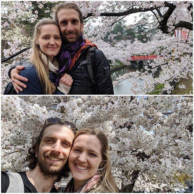 2018 - Hirosaki Park, Aomori, Japan 👇🏻 2019 - Roosevelt Island, NYC 🌸 * * * #cherryblossoms #sakura #festival #thenandnow #japanwins #almostexactlyoneyearago #springtime #nature #smiles #getoutside
