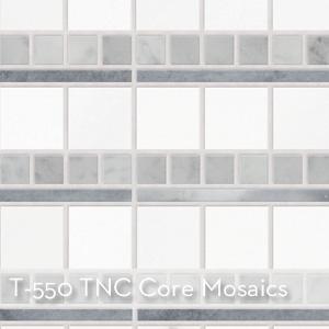 T-550_TNC Core Mosaics.jpg