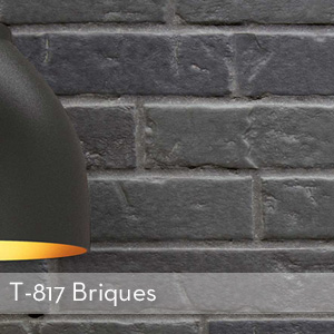 Thumbnail_T-817_Briques.jpg
