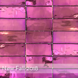 Thumbnail_New For Fall 2018.jpg