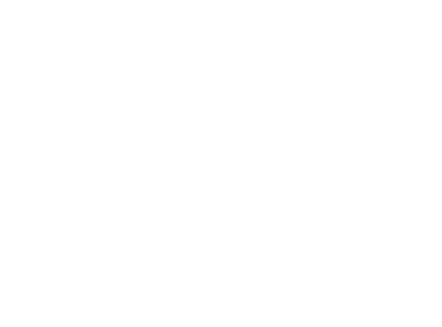 Window into WWI
