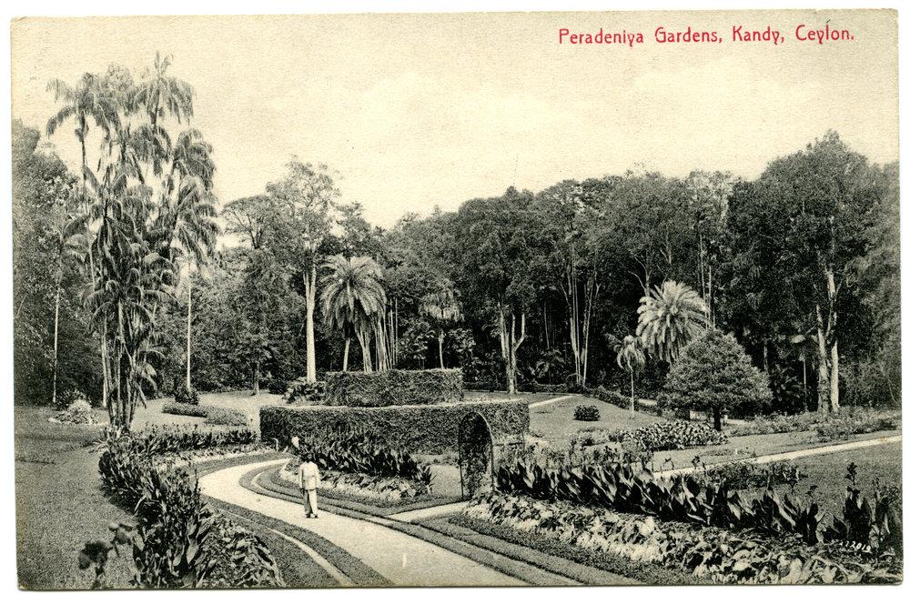 Postcard #15