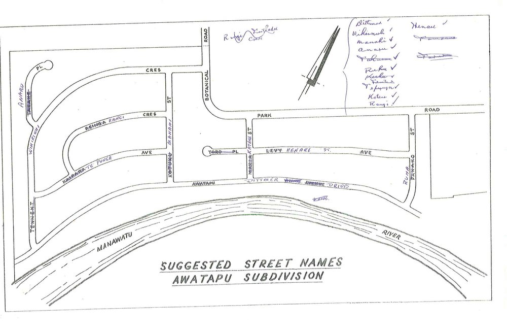 Figure 2: Palmerston North City Council drawn map of 1964 showing the original and revised names of the Awatapu subdivision streets, with Levy Avenue being renamed Henare Street. Source: Ian Matheson City Archives, Series 1/5/5, Volume 75/8/1, part 1.