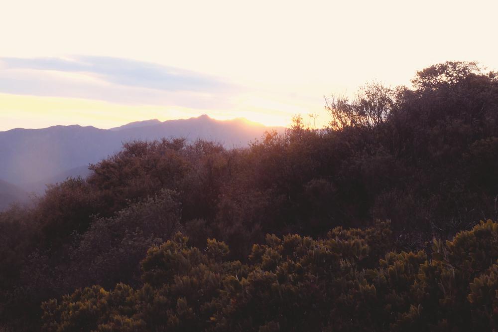 Ojai hills