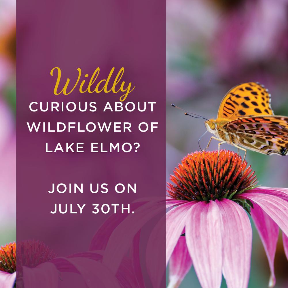 Wildfloweroflakeelmo_invite