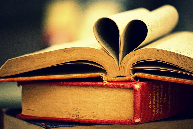Why I Love Litrpg Novels January 8