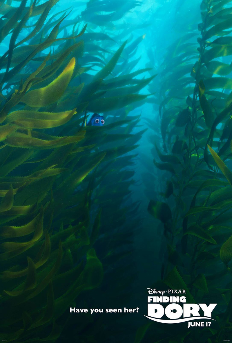 Have You Seen Her (Kelp)