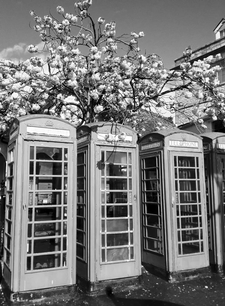 day_110_iphone_truro_telbox.jpg