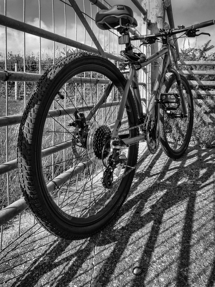 day_233_365_misc_bike_0001.jpg