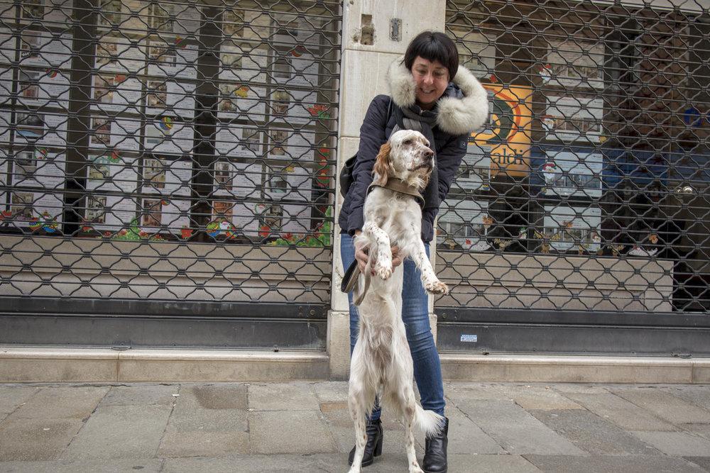 Rosella with Fira English Setter