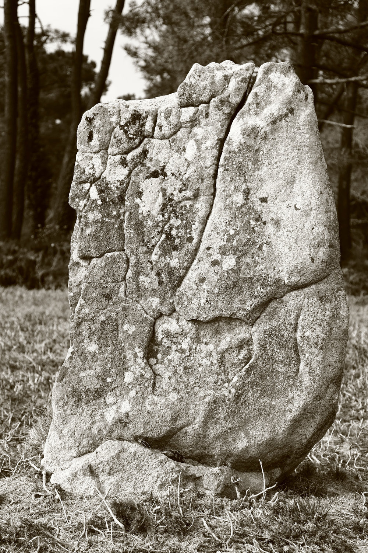 20160323_france_bretagne_carnac_stones-58.jpg