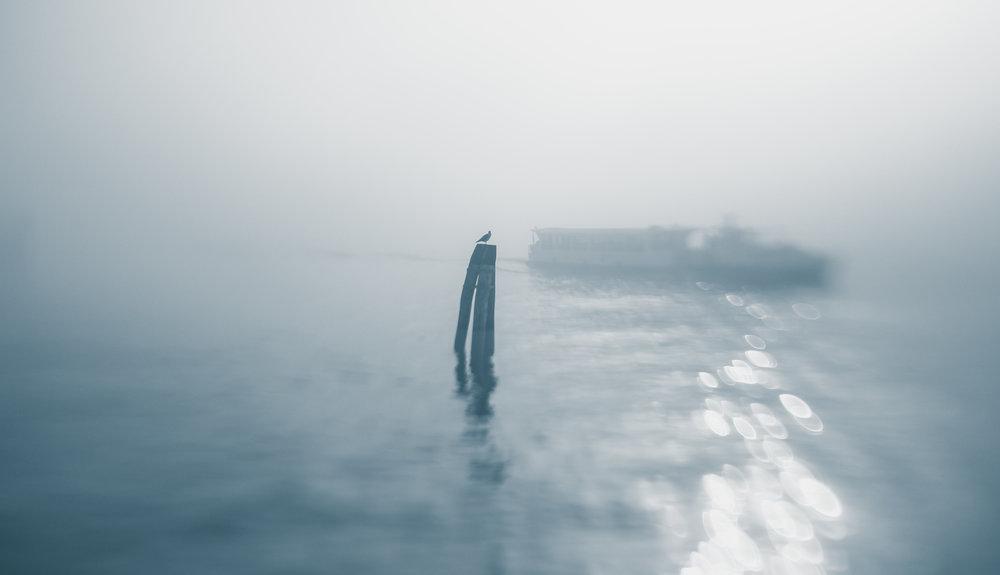 20181229_veniceLB_castello_fog-64.jpg