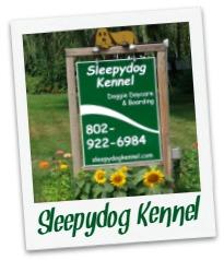 Sleepyd_cover.jpg