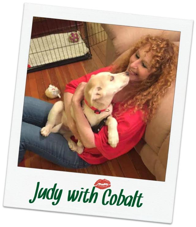 Judy_Cover.jpg