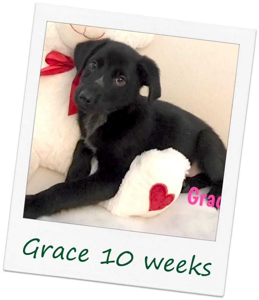 Grace_Cover.jpg